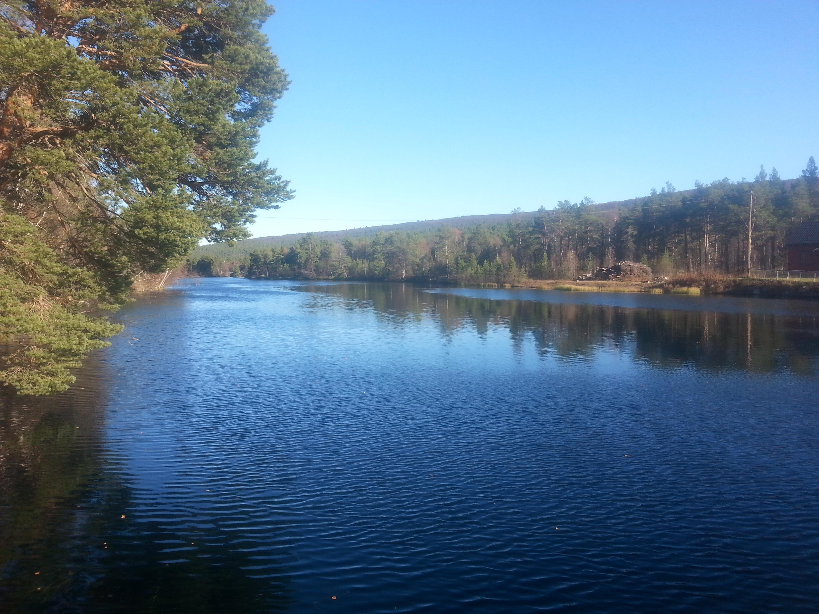Et stille og fredelig vann på denne dagen