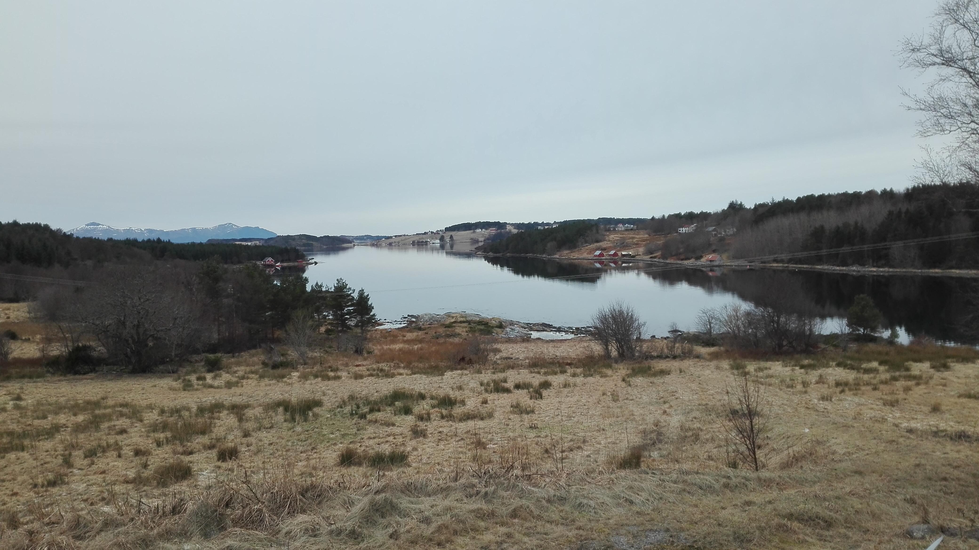 singler i nærheten mega sogn og fjordane